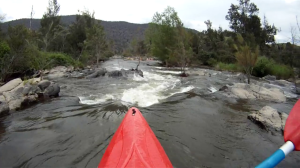 Kayaking the Murrumbidgee
